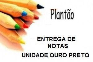 plantao 1